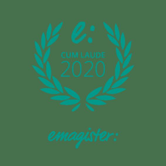 Opiniones Instituto DYN - Cum laude