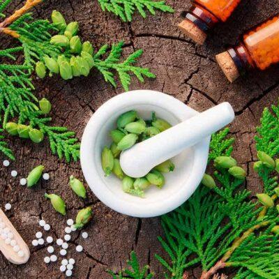 Cursa la formación en naturopatía + Máster en Dietética
