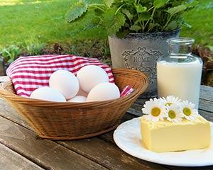 Elige tu formación nutrición y conoce los alimentos sin lactosa