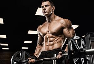 curso-ejercicios-musculacion