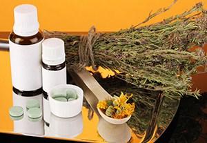 curso-utilizacion-plantas-medicinales