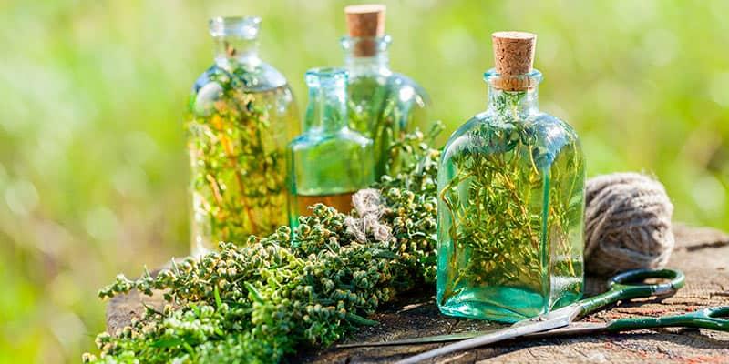 Conviértete en Naturópata Profesional con los cursos de naturopatía