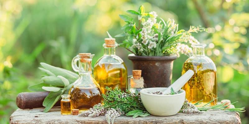 Fórmate con los Cursos Terapias Naturales para especializarte en la administración de plantas medicinales