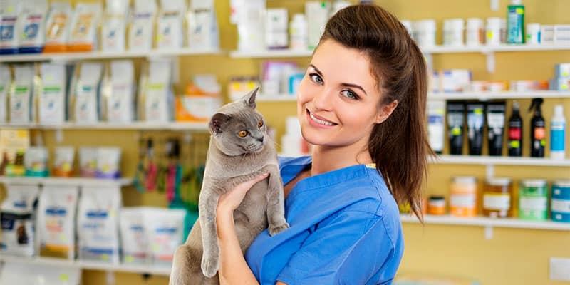 Fórmate en nutrición animal con los cursos veterinaria