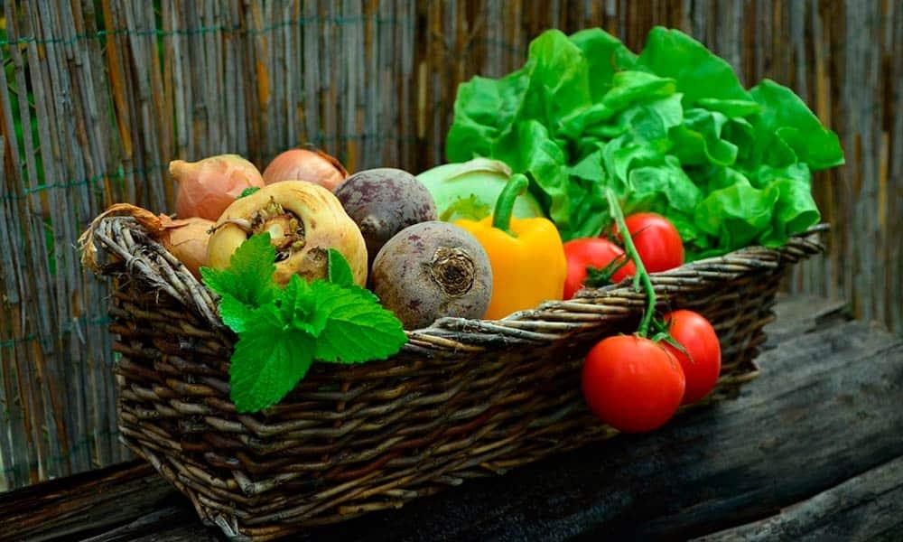 Dieta hipocalórica: perder peso de forma saludable