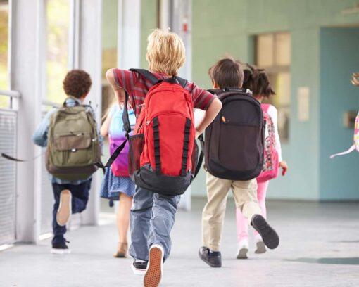 Fórmate con el Curso de Nutrición en Escuelas Infantiles y Comedores Escolares
