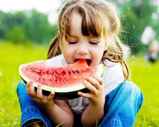 experto-en-nutricion-en-primaria-master-experto-en-coach-nutricional