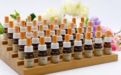 Flores de Bach, una terapia alternativa para mejorar el estado de ánimo