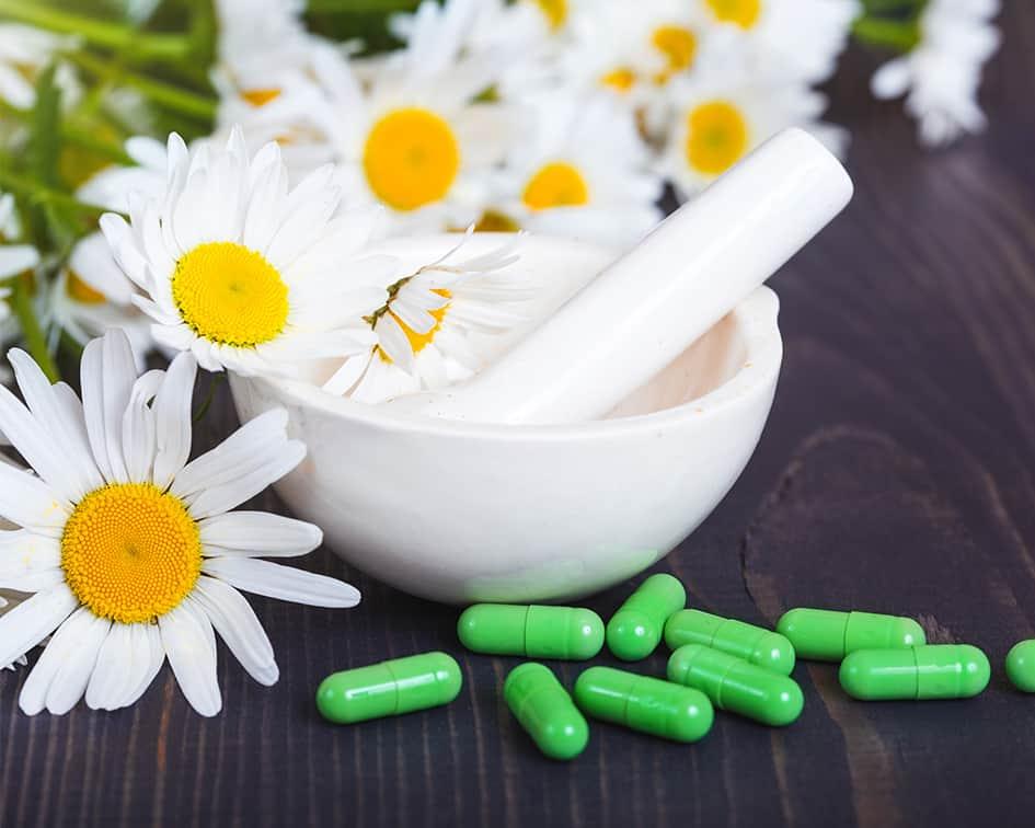 Estudiar el Máster en Naturopatía + Máster en Herbodietética