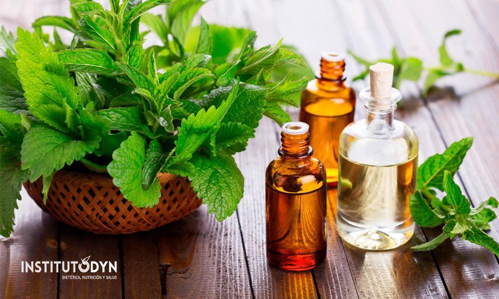 Medicina natural: usos, beneficios y tipos de terapias alternativas