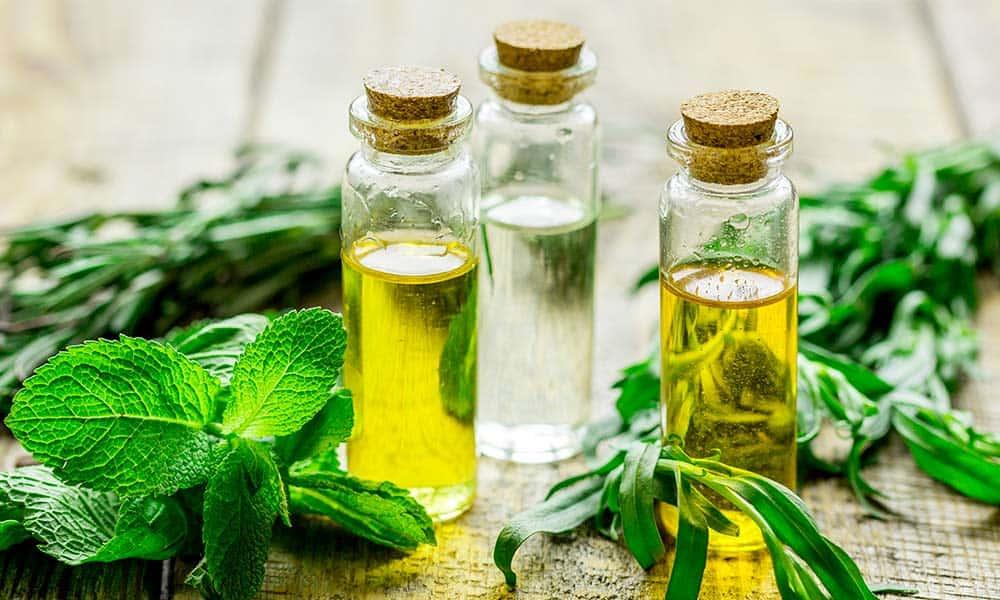 Conoce los tipos de tratamientos naturales que se engloban en la naturopatía