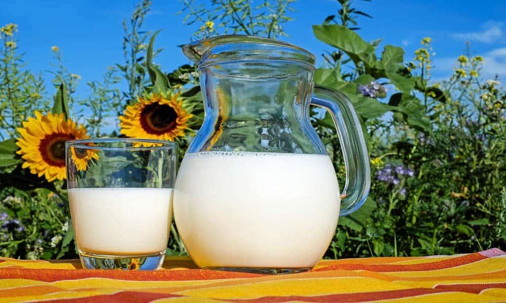 Consejos para sustituir la proteína sin lactosa