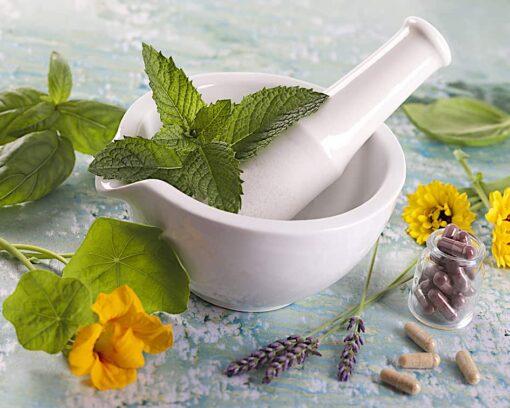 Estudiar el Curso de Herboristería y Dietética para saber aplicar las plantas medicinales como medicina natural y alternativa.